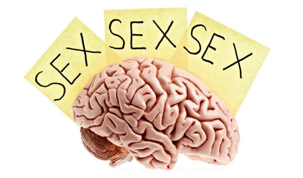 pornhub-gratis-cervell